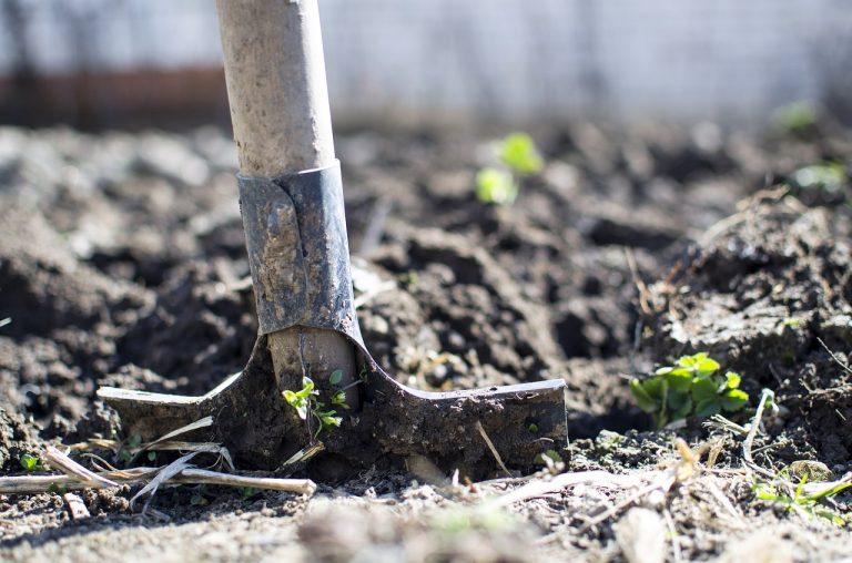 groundwork-osha