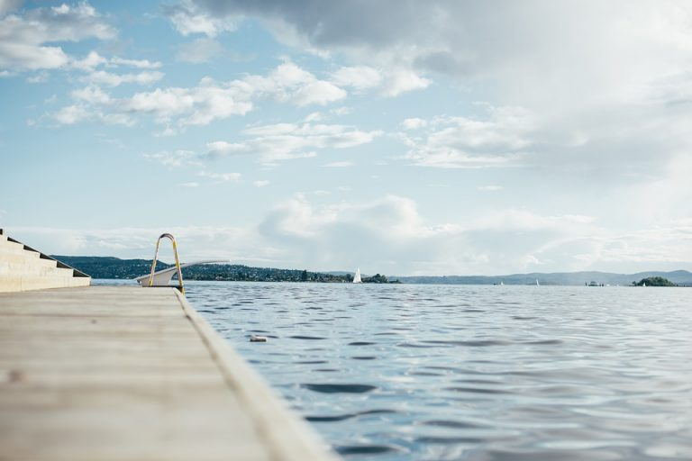 lake-swimming-expert-witness