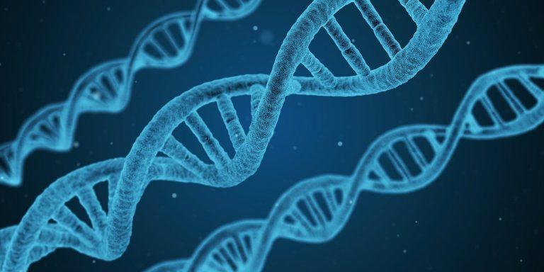 DNA Expert Witness